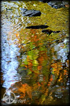backyard creek impressionism