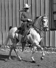 """Silver Chief, one of the horses to portray the Lone Rangers horse, Silver, also appeared in """"Gone With the Wind,"""" ridden by actor Thomas Mitchell. International Museum of the Horse"""