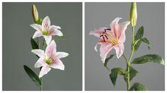 Лилия из фоамирана: мастер-класс бутон, цветок и веточка лилии | Мастер-класс из фоамирана