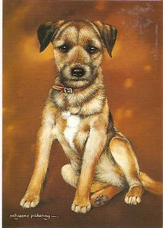 Border Terrier NoteCards Note Cards by Pollyanna Pickering Pack of 4 Painting On Wood, Painting & Drawing, Border Terrier, Note Cards, Sketching, Art Work, Pitbulls, Card Making, Paintings