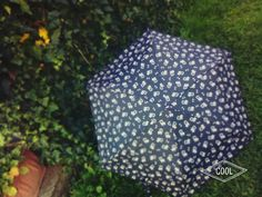 #my#new#umbrella#pretty#umbrella#with#dogs🐶🐶