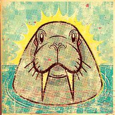 Walrus Illustration by Alexei Vella