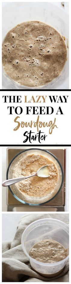 The Easy Way To Feed A Sourdough Starter