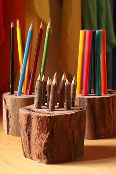 natural tree section art supply holders