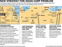 The Obama administration released its 2013 strategy for keeping voracious Asian carp from reaching the Great Lakes. Here are some of the developments it calls for: