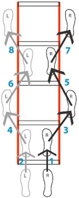 Introduction to the Agility Ladder by Robb Wolf - Training: General - Catalyst Athletics Articles
