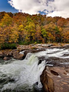 Autumn at The Waterfall - Ohiopyle State Park, PA