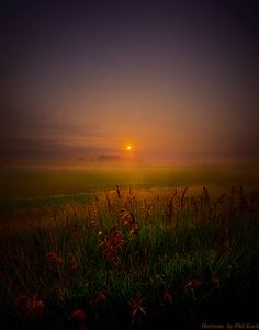 Quietly by phil koch