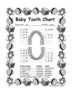 Be ready for the tooth fairy with this handy chart for kids tooth tooth fairy baby tooth chart ccuart Images