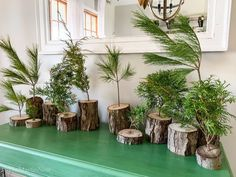 """Bring the outdoors in for a minimal (and cheap) holiday feel! Create these tiny little holiday """"trees"""" with wood from your backyard, a power drill and fresh evergreen clippings. Dollar Tree Christmas, Holiday Tree, Christmas Tree Toppers, Christmas Tree Decorations, Christmas Diy, Christmas Wreaths, Country Christmas, Log Slices, Birch Branches"""