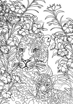 Masja's Leopards coloring page