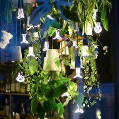 Foto van Boskke met Boskke Sky planters.