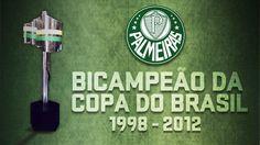 Palmeiras se torna o 'Rei do Brasil'