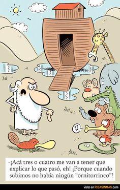 El ornitorrinco de Noé.