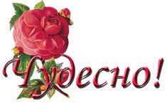 Шьем нежный кремовый клатч для невесты – мастер-класс для начинающих и профессионалов Clay Crafts, Fun Crafts, Diy And Crafts, Paper Crafts, Quilling Flowers, Paper Quilling, Bottle Painting, Bottle Art, Rolled Paper Art
