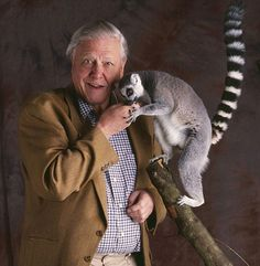 Is David Attenborough set to reveal the Missing Link in human evolution?