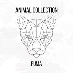 Illustration about Geometric animal puma head line silhouette on white background vintage design element. Illustration of cartoon, line, origami - 69905773 Geometric Drawing, Geometric Lines, Geometric Designs, Geometric Animal, Pumas Animal, Tattoo Muster, Polygon Art, Geometry Art, Background Vintage