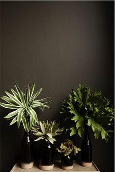 Canyon vases with our new faux single stems abigailahern.com