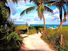 Path from Tween Waters Inn to the beach. Captiva, Florida