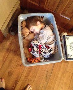a  basket full of buddies