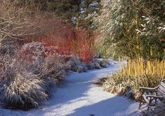 The Winter Garden at Sir Harold Hiller Gardens