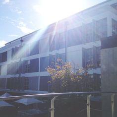 #COFA campus