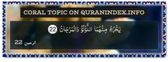 Browse Coral Quran Topic on http://Quranindex.info/search/coral #Quran #Islam [55:22]