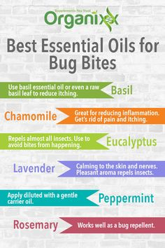 NATURAL BUG BITE REMEDY: Here's a lit of the best essential oils for bug bites. Rosemary Essential Oil is just one of them. It works great as a bug repellant. When buying essential oils, always make sure they are pure and organic. Click on the graphic above to discover what exactly to watch out for.   essential oil health benefits   benefits of essential oils   #organixx #essentialoiltip #essentialoilrecipe #essentialoils