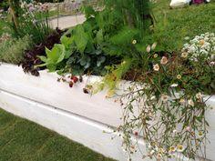 Orto giardino - by Violarancio garden design