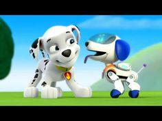Paw Patrol Academy Game - Paw Patrol Cartoon Nick JR English - Paw Patrol full Episodes - YouTube