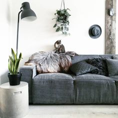 46 best Woonkamer images on Pinterest | Armchairs, Bedroom and Bedrooms