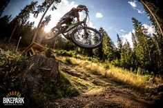 Wer es gern etwas ruppiger mag, dem wird unsere neue Downhillstrecke gefallen. Bike Parking, Mountain Biking, Bicycle, Vehicles, Bike, Bicycle Kick, Bicycles, Car, Vehicle