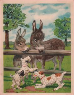 Dogs Want to Play with Donkeys Burros Vintage Print Authentic 1939 | eBay