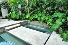 Exotic island homes - exterior view - tropical garden pool water features, Tropical Garden Design, Tropical Landscaping, Landscaping With Rocks, Modern Landscaping, Backyard Landscaping, Tropical Gardens, Bali Garden, Garden Pool, Landscape Design Plans