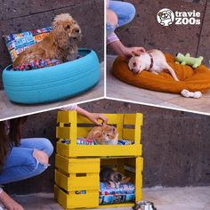 DIY pet beds DIY camitas para mascotas Dog clothes DIY camitas for dogs Jar Crafts, Bottle Crafts, Diy And Crafts, Diy Dog Bed, Pet Beds Diy, Diy Hanging Shelves, Mason Jar Diy, Diy Stuffed Animals, Diy Projects