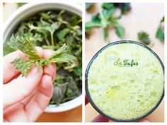 Weed, Smoothie, Plants, Recipes, Recipies, Marijuana Plants, Smoothies, Plant, Ripped Recipes