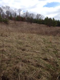 Gorgeous acreage in Jackson County, Ohio for sale. Great views, some woods, owner financing available. Land For Sale, Great View, Ohio, Woods, Finance, Jackson, Columbus Ohio, Forests, Finance Books