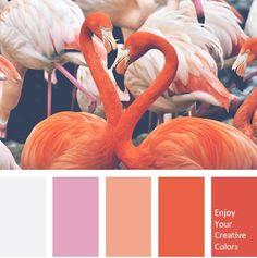 Color Palette - Million Shade Coral Colour Palette, Pantone Colour Palettes, Pantone Color, Colour Schemes, Coral Color, Color Combinations, Red Coral, Flamingo Color, Creative Colour