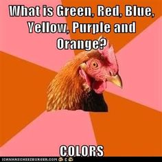 advice animals memes  - Animal Memes: Anti-Joke Chicken: Inadvertently Offends the Colorblind