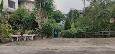 [DECOllectif] Les bonnes idées pour vivre dehors / plantes tropicales en Thaïlande