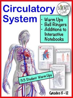 The Human Body Circulatory System. NO PREP Biology or Life Science Warm-Ups, Bell-Ringers, Exit Slips, and / or Additions to Interactive Notebooks. No gluing, cutting or folding required. These warm up / interactive notebook pages are perfect for students in grades 8 - 12.