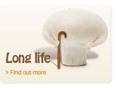 Mushrooms have a clear role in promoting health within balanced eating for a long life. - See more at: http://www.powerofmushrooms.com.au/health-nutrition/health-nutrition/long-life/#sthash.gPz50j4w.dpuf