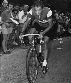 Tour de France Grand Champions - 5. Jacques Anquetil (1957, 61-64)   Sports Illustrated Kids