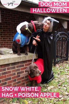 Are you looking for an amazing Dog Mom Halloween Costume for you and 2 dogs? Snow White and the Evil Queen (as a the old hag!) complete with her poison apple is so fun and original. If you have 1 dog, you could do this as a couples costume with Snow White and the Queen. But if you have 2 dogs, its fun to have Snow White, the old hag and her poison apple! This is a simple DIY dog mom couples Halloween Costume. Durable Dog Toys, Dog Cleaning, Chocolate Labs, Snow Dogs, Dog Activities, Diy Dog, Couple Halloween Costumes, Dog Training Tips, Simple Diy