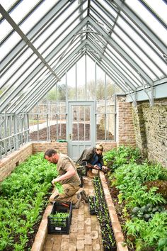 Vegetable beds at the PIG Hotel