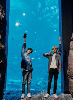 jungwoo x doyoung Nct 127, Jaehyun Nct, Taeyong, Kim Jung Woo, Atlanta, Aquarium, Nct Life, Nct Doyoung, Memes