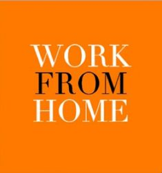 Work from home and earn a six-figure income.