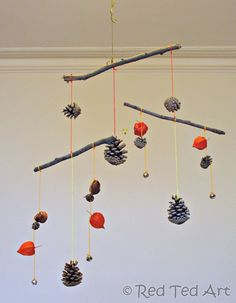 Nature craft for kids. pine cone stick and dried ground cherry mobile.