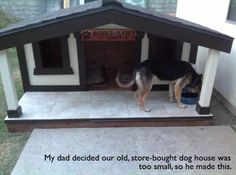 Old Dog House was to Small so They Got This One ! Watch funny pet videos and pictures at http://www.yourpetclip.com/