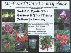 Orchid & Exotic Plant Nursery On South Coast KZN Plant Tissue, Plant Nursery, Exotic Plants, South Africa, Orchids, Things To Do, Wedding Venues, Coast, Gardens